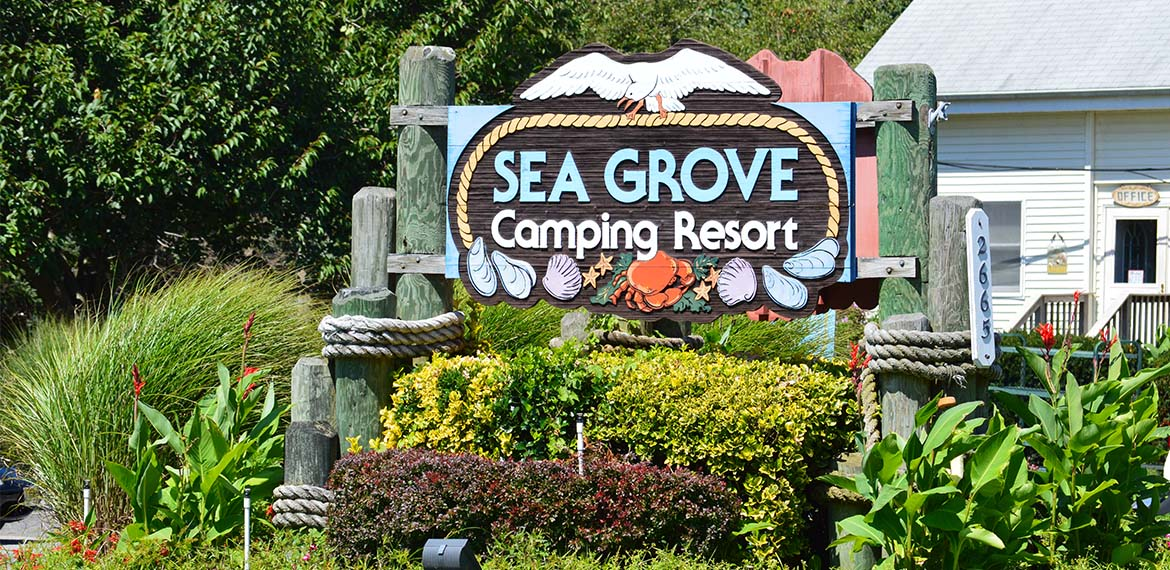 Sea Grove Camping Resort New Jersey Campgrounds